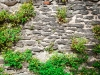 texture of the stone wall with grass