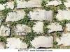 pietra-marciapiede-con-erba-archivio-fotografico__k6717747